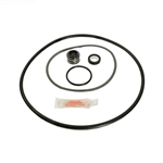 Go-Kit 25 | Sta-Rite PE PEA P2 and P2RA AJ Series Repair Kit