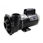 3721621-1D | Executive Pump 2 Speed 4 HP