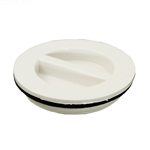 400-4140 | Flush Plug with Gasket - White