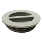 400-4147 | Flush Plug with Gasket - Gray